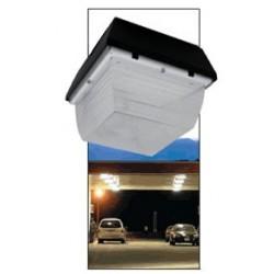42 Watt Fluorescent Canopy